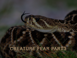 Creature Fear part 3